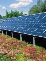 Gründach, Dachbegrünung, extensiv begrüntes Steildach, Flachdachbegrünung, Dachbegrünungsrichtlinien, Solarenergie, Wärmedämmung, Regenwassernutzung, Begrünung, Gründachforschung, Gründach-Architektur