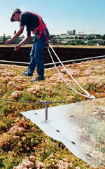 Absturzsicherung, Gründach, begrüntes Dach, Kiesdach