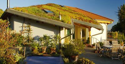 BGL, Dachbegrünung, begrüntes Dach, Dachfläche, Gründach, begrünte Dächer, Sedum-Begrünung, Stauden, Sträucher, Gebäudebegrünung