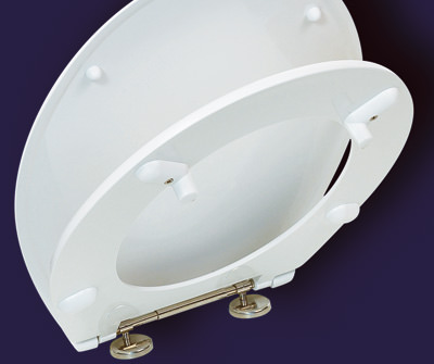 Toiletten-Sitz, WC-Sitz, Sanitärtechnik, WC-Sitze, körperfreundlich Toiletten-Sitze, barrierefreie Toilettenanlage, Toiletten, Toilette, barrierefreies Badezimmer für Pflegeeinrichtung, Altenheim, thermoplastischer, körperfreundlicher Kunststoff