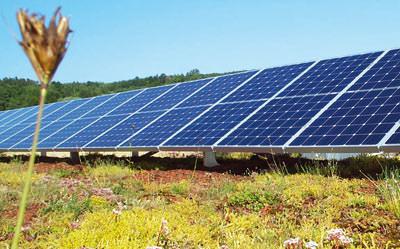 Solarenergie, Stromerzeugung, Dachbegrünung, Gründach, Photovoltaik, Warmwasseraufbereitung, Solarthermie, Wärmedämmung, Heizungsunterstützung, Dachdichtung, Solarnutzung, Flachdach, Dränage, begrünte Dächer, Wasserspeicher