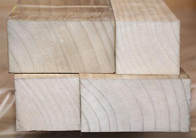 modifiziertes Holz statt Holzschutz, nachhaltige Nutzung von Holz, enhanced wood, modifizierte Holzprodukte anstatt Holzschutzmittel, Holzkonstruktionen