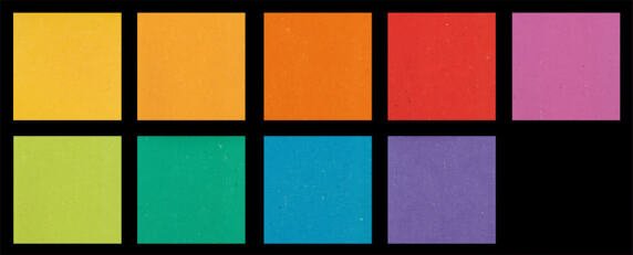 Colorette- The Festival of Colours