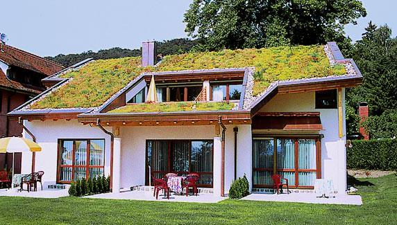 Einfamilienhaus mit schräger Dachbegrünung / mit geneigtem Gründach