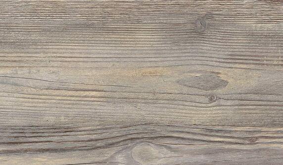 Antic Pine