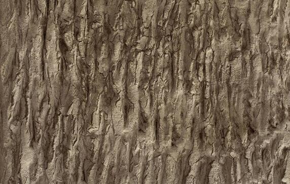Wandgestaltung mit Baumrindenoptik.